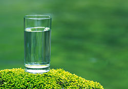 glass-water-on-moss